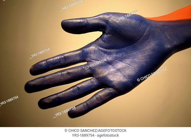 A model shows her hand painted in blue during a body painting session with make-up artist Erika Monroy, founder of Akin Body Painting, in Toluca, Mexico