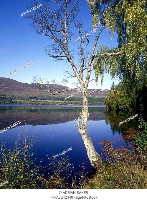 Beautiful reflections on Loch Alvie in the Spey Valley