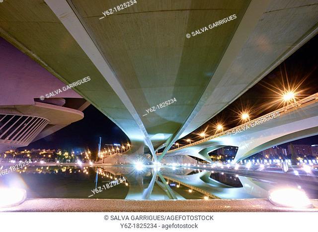 Monteolivete Bridge seen from below, Valencia, Spain, Europe