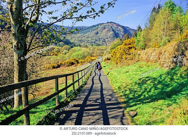 A path on the valley, near to Lower Lake, Glendalough, Republic of Ireland