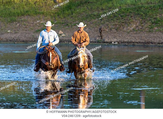 Two wranglers (cowboys) on horses, riding through water, California, USA