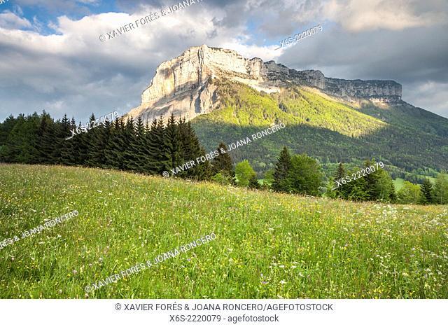 Mont Granier at sunset, Natural Parc of La Chartreuse, Savoie, Rhône-Alpes, France