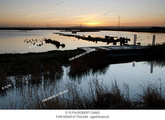 View of flooded wetland habitat at sunrise, Oare Marshes Nature Reserve, Kent Wildlife Trust, Kent, England, december