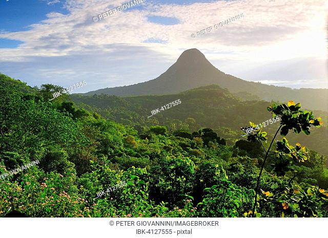 Volcano Mont Choungui, or the small Sugarloaf, near Chirongui, Mayotte