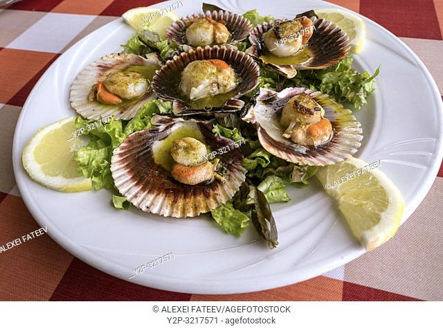 Galician scallops, Spain