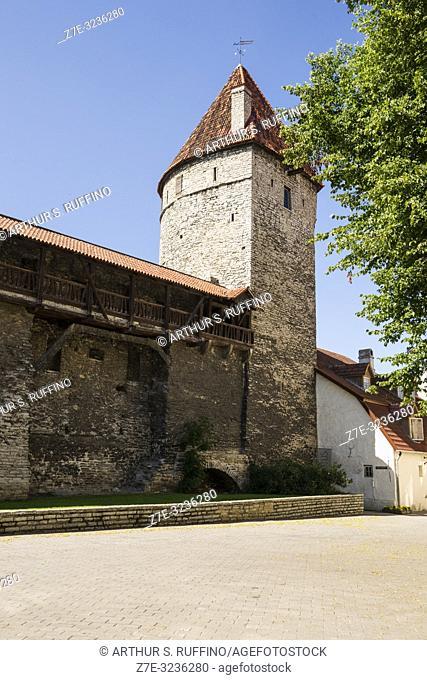 Golden Leg Tower (Kuldjala torn), Tallinn City Walls (Tallinna linnamüür). Old Town, Tallinn, Estonia, Baltic States