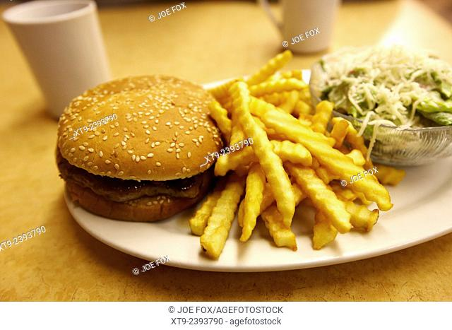 burger crinkle cut fries and salad in a cheap diner in north america