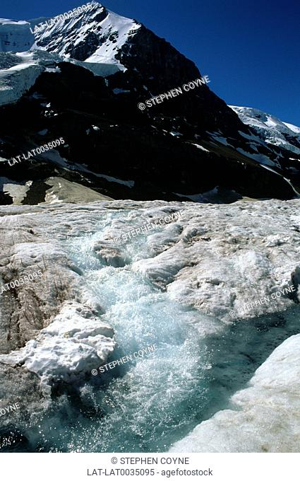 The Athabasca Glacier is one of the six principal ice fields of the Columbia Icefield. Due to global warming,the glacier has receded more than 1