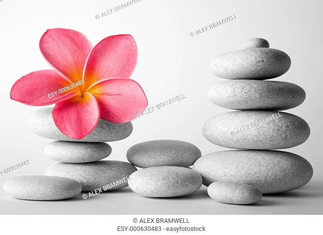 Stone Stack and Frangipani Flower