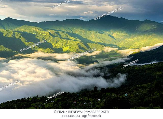 Fog is covering Phewa Lake in the morning, surrounding hills with trees are sunlit, Sarangkot, Kaski District, Nepal