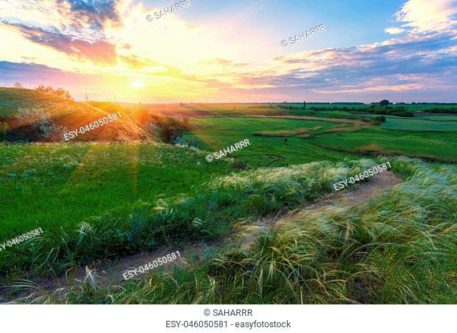Sunrise in Ukrainian steppe. The National Park Dvurechanskiy , Kharkiv region, Ukraine