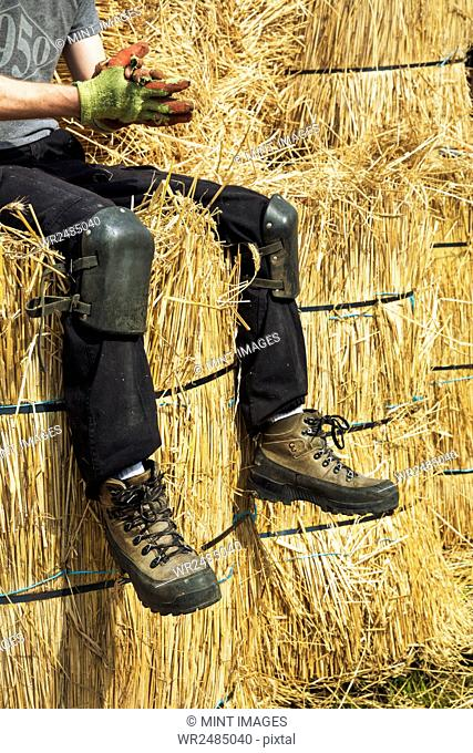 Thatcher wearing kneelers and protective gloves sitting on bundles of straw