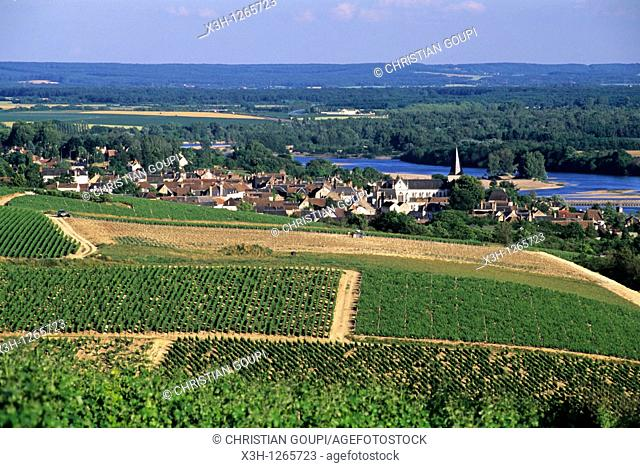vineyards around Pouilly-sur-Loire, Nievre department, region of Burgundy, center of France, Europe