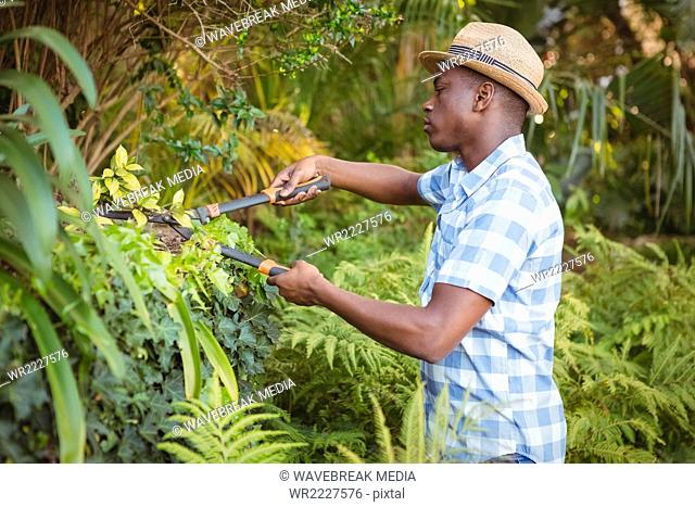Handsome man doing some gardening