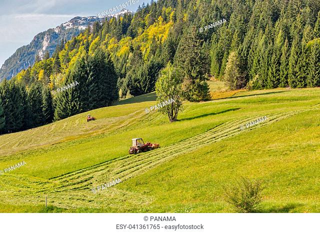 tractor mowing grass on an alpine lawn in Austria