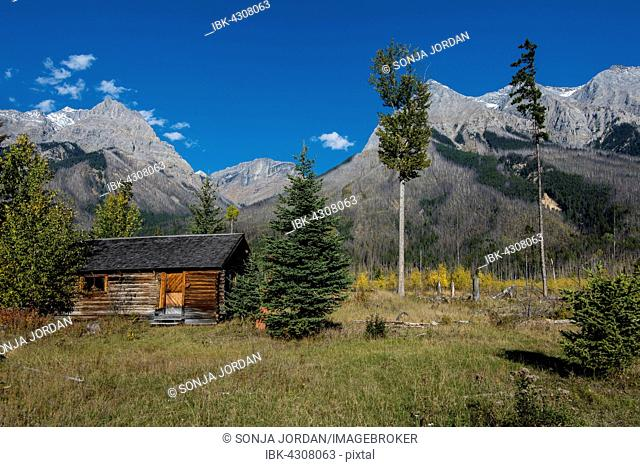 Deerlodge Cabin, first supervisory hut from 1904, Yoho National Park, British Columbia Province, Canada