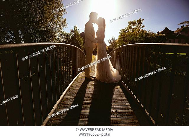 Bride and groom kissing on the footbridge in the garden