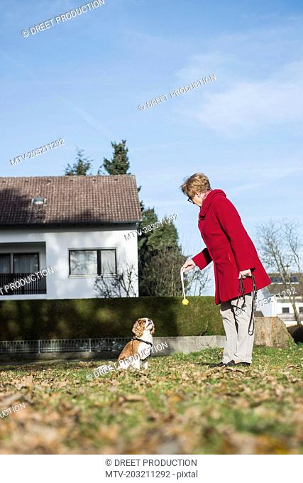 Old woman and dog playing with toy at park