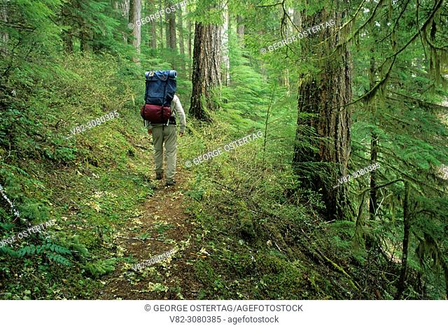 Bagby Trail, Mt. Hood National Forest, Oregon