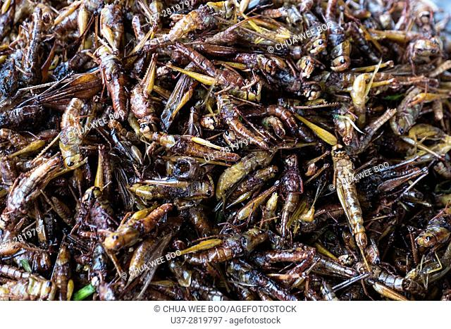 Horizontal close up of deep fried grasshoppers and baked produce on sale at a market stall in Cambodia