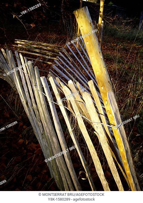 Disheveled garden fence