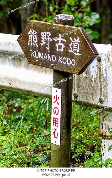 Kumanno Kodo,Cattle Doji,Japan