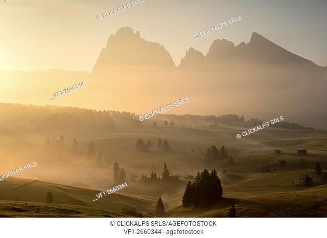 Alpe di Siusi/Seiser Alm, Dolomites, South Tyrol, Italy. Autumnal morning light on the Alpe di Siusi/Seiser Alm
