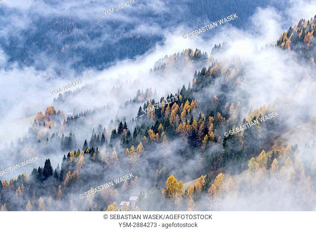 Misty valley seen from Costalta, Province of Belluno, region of Veneto, Italy, Europe