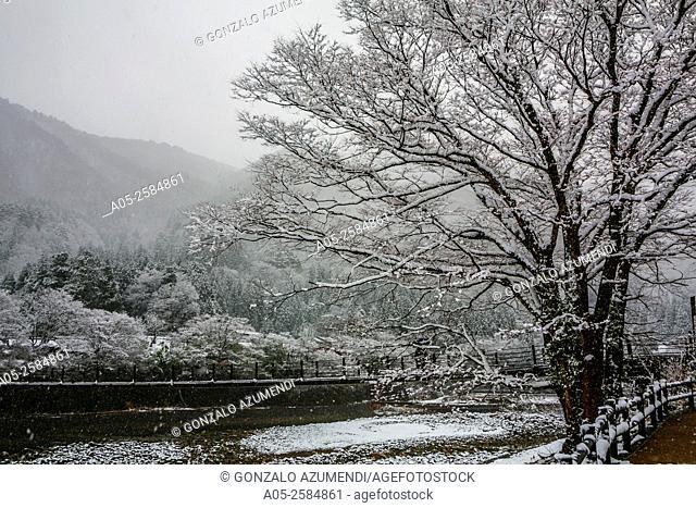 Bridge. Shirakawago. Chubu region. UNESCO World Heritage. Japan