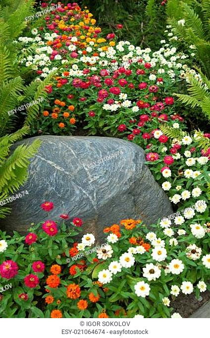 Beautiful summer flowers in a flower-bed near the stone
