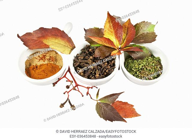 Autumn spices and leafs over white isolated background