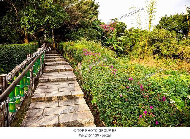 Yuanshan Morning Trails