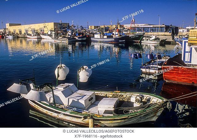 fishing port of Adra. Almeria province, Andalucia, Spain