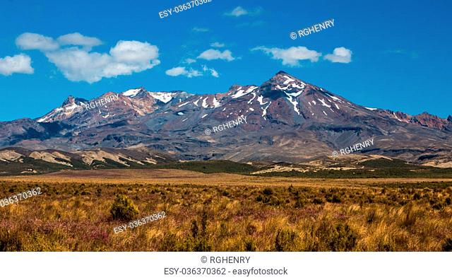 Mt. Ruapehu in The National Park New Zealand in summer time