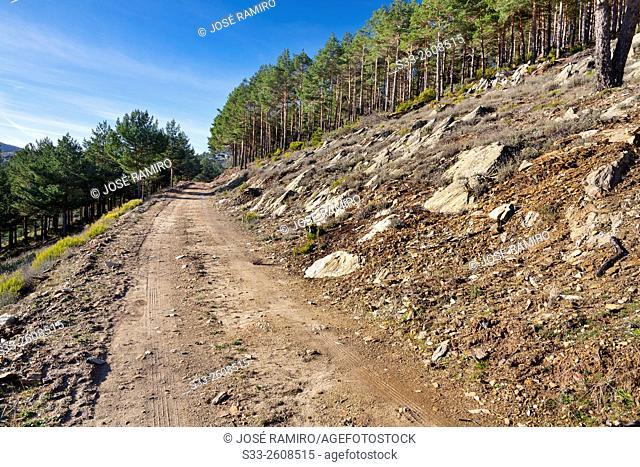 Road in the Bañaderos. Sierra Norte. La Hiruela. Madrid. Spain. Europe