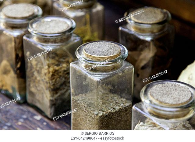 Medicinal plants drying outdoors, detail of alternative medicine