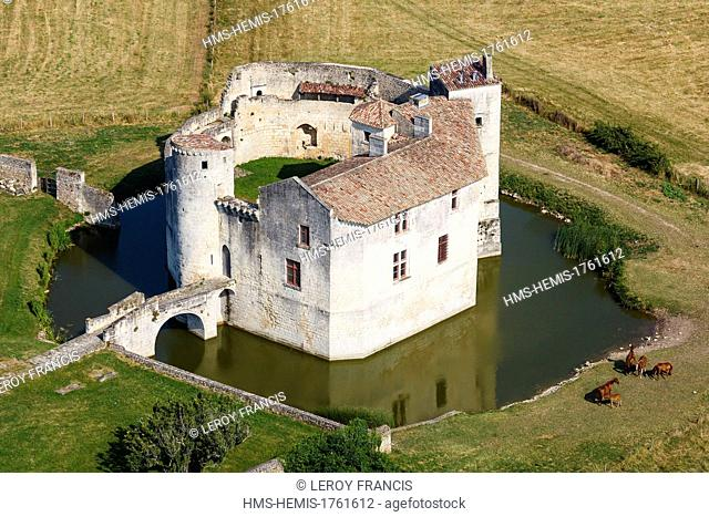 France, Charente Maritime, Saint Jean d'Angle, castle of the 12th century (aerial view)