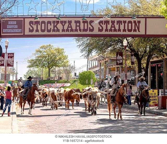 Stockyards station Cattle Drive, Fort worth
