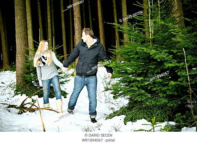 Young couple searching for the perfect Christmas tree