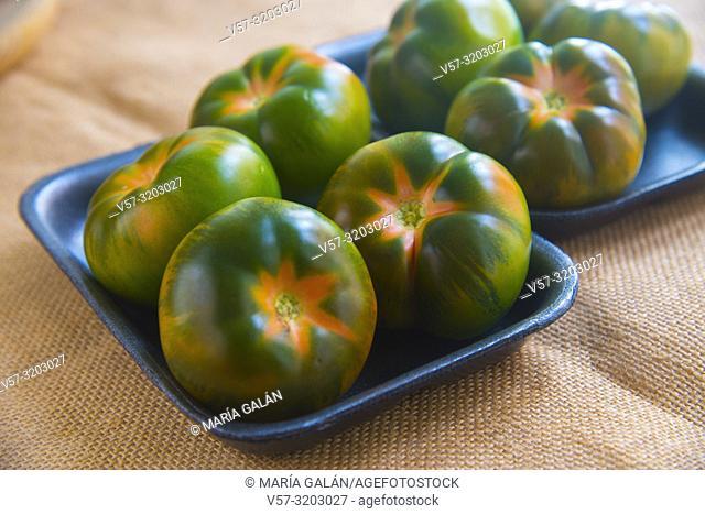 Raf tomatoes. Still life