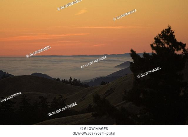 High angle view of clouds around a hill, Mt. Tamalpais State Park, California, USA