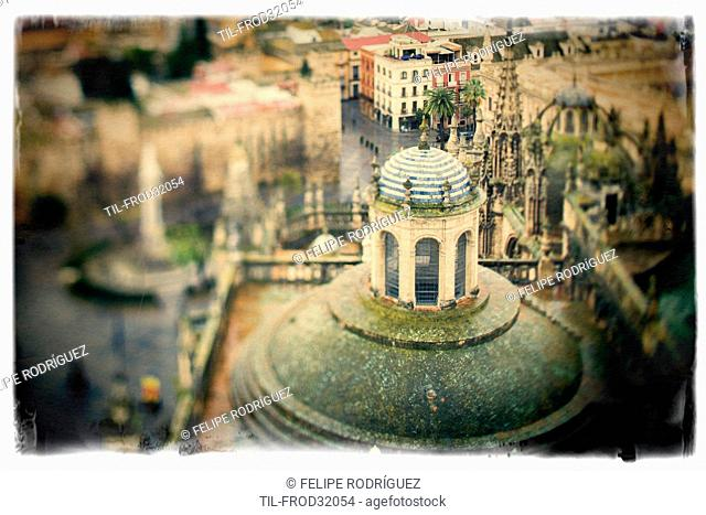 View of the roof of the Cathedral from the top of the Giralda tower, Seville, Spain. Tilted lens used for a shallower depth of field