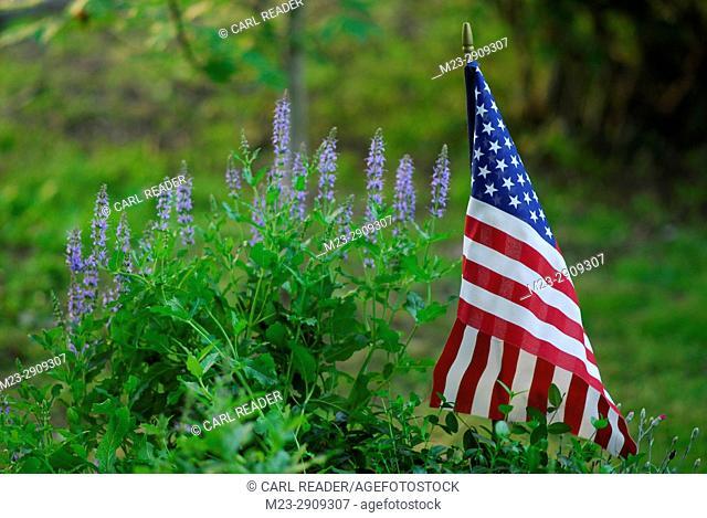Flowers grow beside the American flag, Pennsylvania, USA