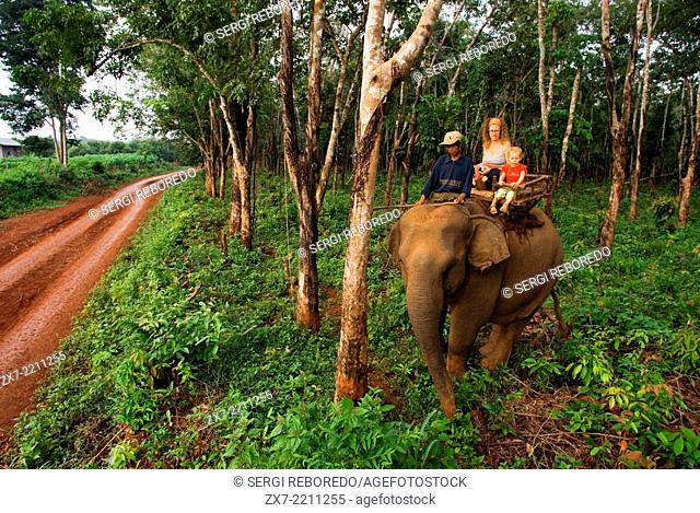 Elephant rides from village Kateung. Travel with children. Ratanakiri. Banlung is a good base to visit the countryside; you also can have short elephant rides...