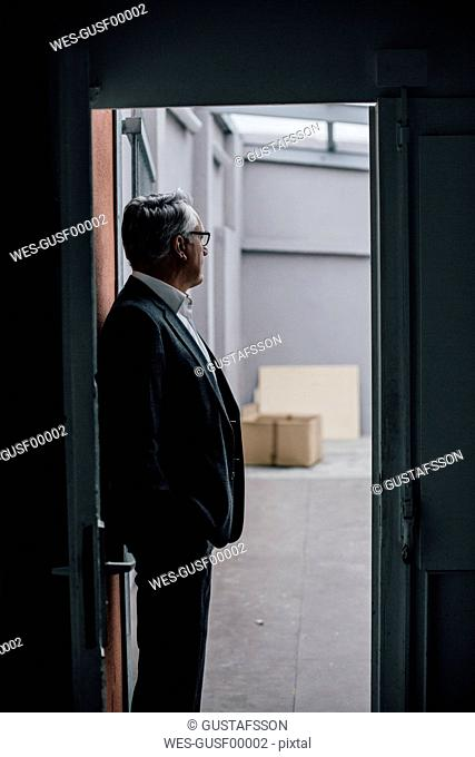 Senior businessman standing in door frame