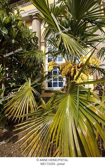 Detail of Botanical Garden with castle. Part of University Bonn. In Bonn-Poppelsdorf, Germany