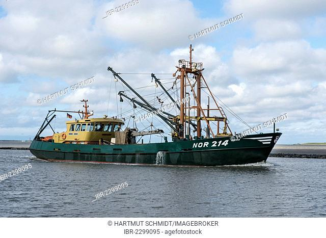 Anna NOR 214 shell cutter entering the harbour of Norddeich, East Frisia, Lower Saxony, Germany, Europe