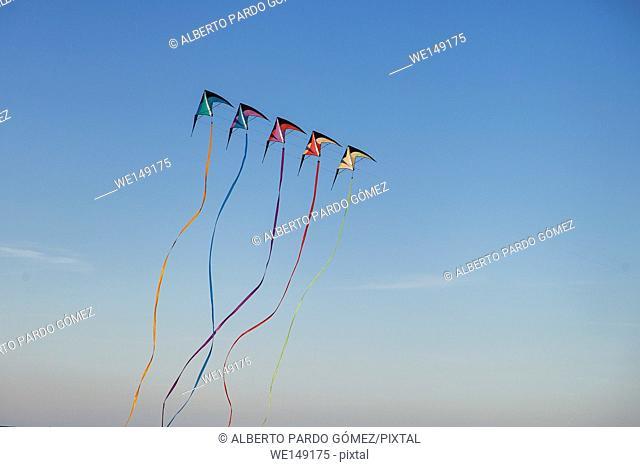 Colorful kite in the sky, valencia, Spain