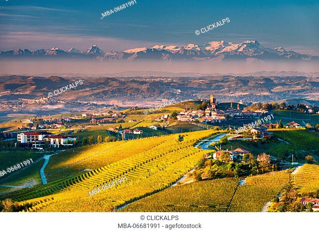Italy, Piedmont, Cuneo District, Langhe - Autumnal view