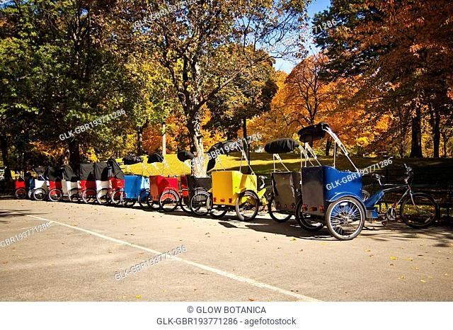 Pedicabs in a park, Central Park, Manhattan, New York City, New York State, USA